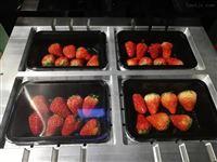 MAP-JY420A草莓真空气调包装机