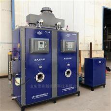 DS-300学校用生物质蒸汽发生器