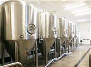 啤酒设备生物发酵罐