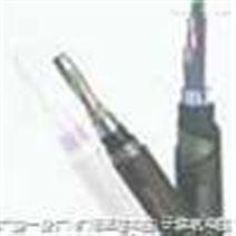 铁路信号电缆PTYL23 52X1