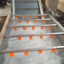 红枣蔬菜气泡清洗机价格