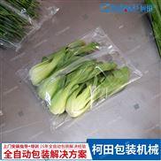 自动蔬菜包装机