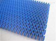 蓝色平格塑料网带
