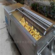 土豆去皮毛辊清洗机