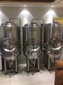 自釀啤酒成本 啤酒設備廠家 引進德國工藝