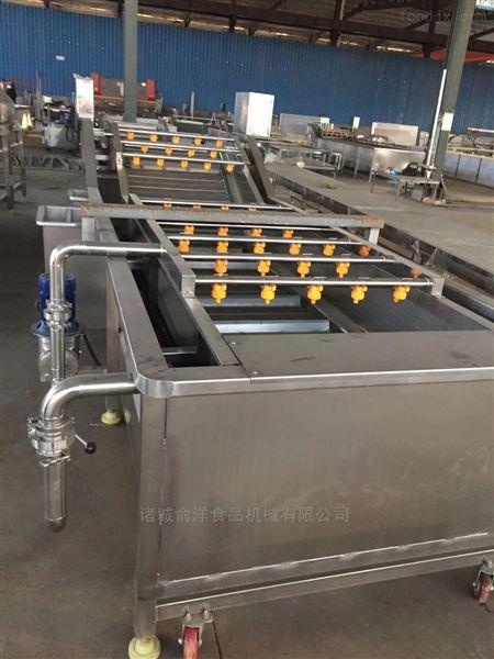 厂家供应红枣气泡清洗流水线