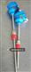 防爆熱電阻WZPK2-240/WZPK-241/WZP2-140