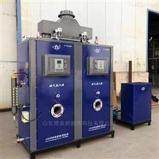 DS-300天燃气蒸汽发生器