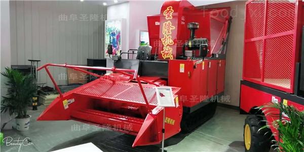 玉米秸秆青贮机厂家 圣隆牌青储机批发