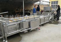 全自动叶类清洗机气泡式蔬菜加工设备质量优