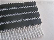 型号俱全-900塑料网带1100输送网带