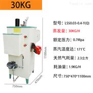 石家庄60KG小型柴油锅炉广州市宇益能源科技