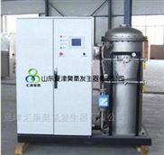 乌鲁木齐-石河子大型大功率臭氧发生器
