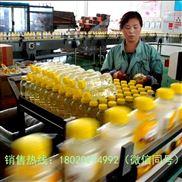 瓶装酒饮料生产线设备