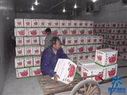 40立方水果保鲜库造价