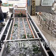 大型涡流式净菜清洗机