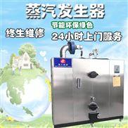 電加熱燃氣加熱生物質顆粒環保蒸汽鍋爐