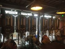 北京精釀啤酒設備 1000升啤酒 設備