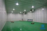 大型保鲜冷库设计建造/冷库安装公司雪艺