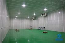 在上海建造一个保鲜冷库要多少钱