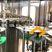 猕猴桃饮料生产线
