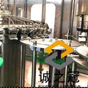 生产果蔬饮料加工设备