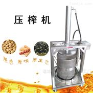 定制牡丹籽压榨机  优质蜂蜜压滤机