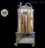 自酿精酿啤酒设备500L智能版发酵罐