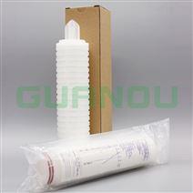 PES聚醚砜折叠滤芯 医药行业除菌滤芯