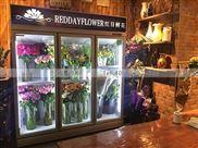 重庆3门鲜花保鲜冷柜什么品牌质量