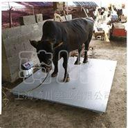 甘肃3000公斤称牛电子地磅秤