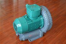 防爆变频高压旋涡风机 高压气泵
