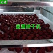 紅棗烘干機廠家貨源 大棗干燥設備低價熱銷