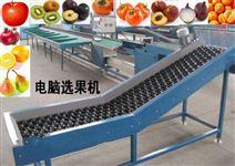 大青枣重量分级设备青枣选果机