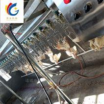 鸽子屠宰流水线 乳鸽自动屠宰设备