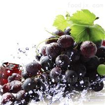 葡萄除梗破碎机 小型葡萄酒设备
