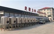 小型啤酒设备 微型啤酒设备 精酿啤酒设备 自酿啤酒设备厂家