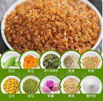 杂粮合成米竹香米等双螺杆膨化机生产线