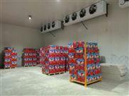 10吨水果冷库造价