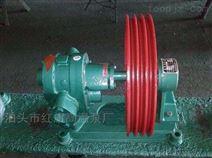紅旗NYP2.3高粘度內齒泵 廠家價格