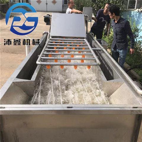 多功能蔬菜清洗机 滚浪高压清洗设备