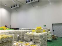 上海安装一个1000平水果保鲜库要多少钱