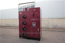 服装厂生物质蒸汽发生器