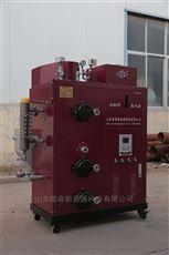 DS-100豆制品厂生物质蒸汽发生器