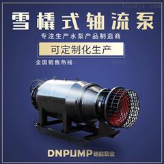多重密封潜水轴流泵