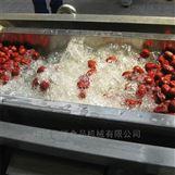 台湾大紅棗加工氣泡清洗機