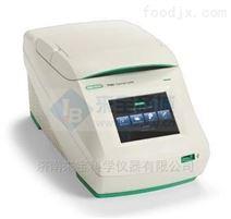 T100进口伯乐梯度PCR仪