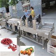 新疆大棗氣泡清洗風干機 專業果蔬清洗設備