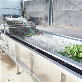 冲浪式橄榄菜清洗机蔬菜加工设备