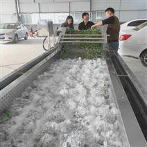 四川青菜沖浪清洗機凈菜加工設備